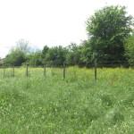 """Мониторинг на инициатива """"Закупуване на имот за отглеждане на пчели"""" - 16.05.2014 г."""