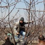 Обучение за овощари от с. Брестовица 21.02.2015 г.
