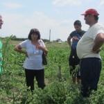 проучване на предложение за закупуване на земя в с. Караджалово - 04.06.2015 г.