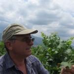 Проследяване на фитосанитарното състояние на отглежданите земеделски култури в региона на гр. Перущица - 19.06.2015 г.