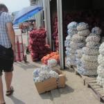 Работа по инициатива за закупуване на чесън за семе за участници от с. Чалъкови - 06.08.2015 г.