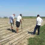 Агроконсултации и взимане на почвени проби за анализ от имоти на земеделски стопани в с. Чалъкови - 26.08.2015 г.