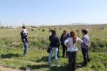 """Мониторинг на инициатива """"Закупуване на крави"""" за участник в с. Окоп - 17.04.2015 г."""