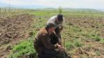 Предоставяне на агрономически консултации на участници по програмата - 27.04.2015 г.